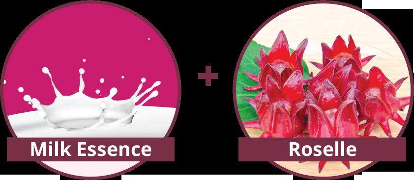 Shakura-milk-essence-roselle