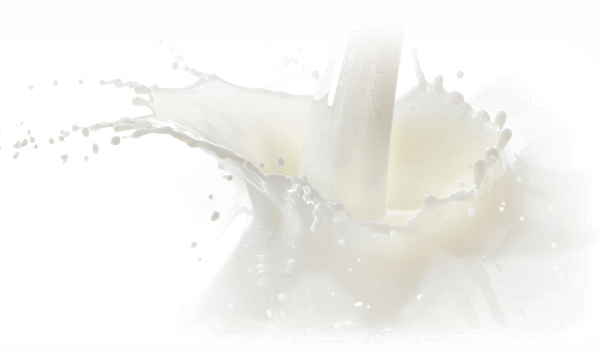 Shakura Singapore milk ingredient for treatment