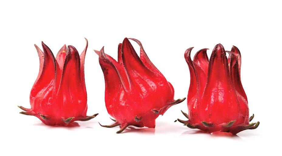 Shakura Singapore roselle ingredient