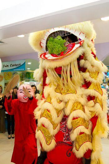 Shakura-Plaza-Singapore-Grand-Opening-lion-dance-mascott