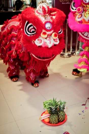 Bishan-Junction-8-Shakura-Grand-Opening-lion-dance-3